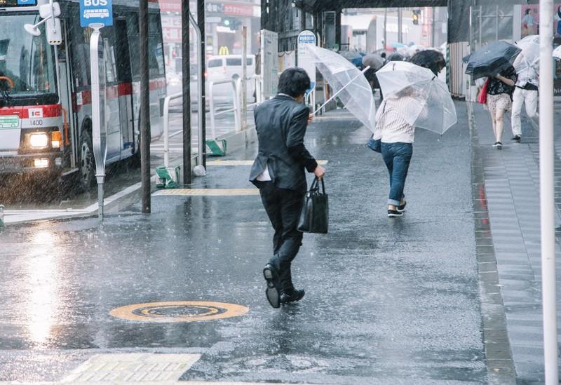 台風 車両保険