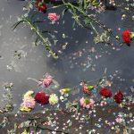 ミオヤマザキ「溺死」