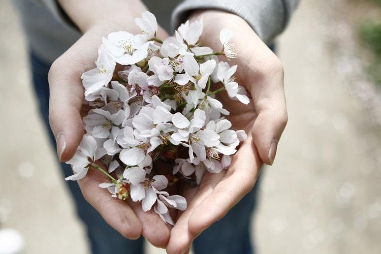 宇野実彩子「咲いた春と共にあなたへ贈る言葉」