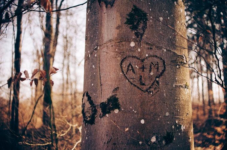 aiko (あいこ)「愛した日」